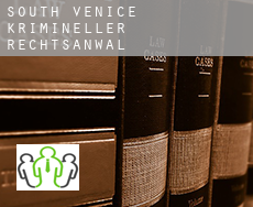 South Venice  krimineller rechtsanwalt